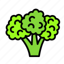 broccolli, drink, food, meal icon