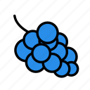 drink, food, grapes, meal icon