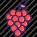 berry, food, fruit, grape, grapes