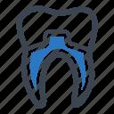 dental crowns, dental health, teeth icon