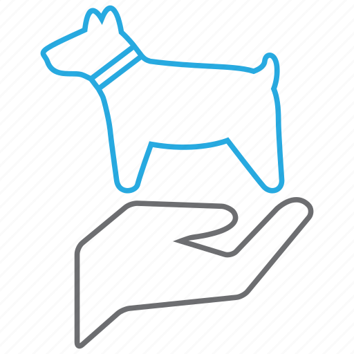 care, dog, pet icon