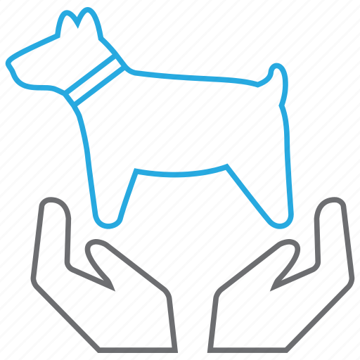 Care, pet, dog icon - Download on Iconfinder on Iconfinder