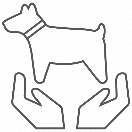 animal, care, dog, love, pet icon