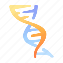 chromosome, dna, genetic, medical, science, structure icon