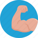 muscles, force, strength, fitness, bodybuilding, sport, arm
