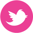media, pink, round, social, twitter icon