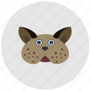 animal, avatar, cat, face, fat, head icon