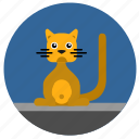 animal, body, cat, kitty, pet, round icon
