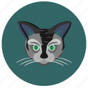 animal, avatar, cat, face, kitty, round icon
