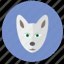 avatar, head, polar, round, wolf icon