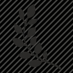 branch, laurel, left, win icon