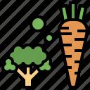 cauliflower, food, fruit, organic, vegan, vegetable icon