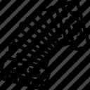 accordion, music, musical, orchestra icon