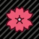 blossom, festival, flower, japan, sakura icon