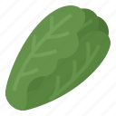 cos, green, green cos, healthy, lettuce, vegetable icon