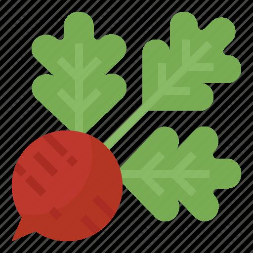 food, radishes, root, vegetable icon