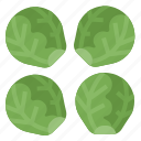 healthy, sprouts, vegetable, vitamins icon