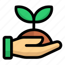 reforestation, ecology, environment, plant, tree, sprout, green