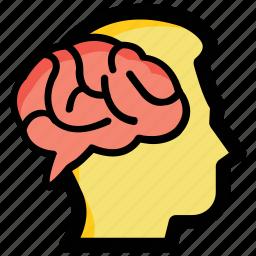 bright idea, creative mind, human brain, ideology, intelligent icon