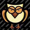 bird, intelligence, owl, wisdom, wise owl icon