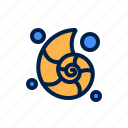 biology, knowledge, learning, nautilus, school, study icon
