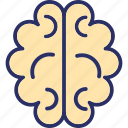 body organ, body part, brain, human brain icon