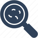 ebola, germ, magnifier, magnifying glass icon