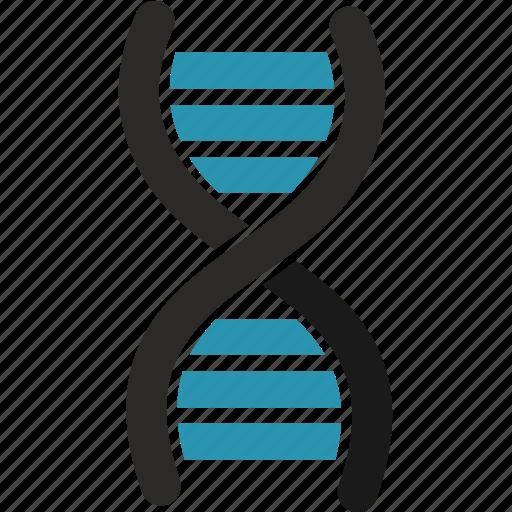 dna, education, molecule, science icon