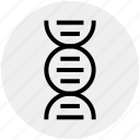 chain, dna, genetics, helix, molecule, science, strand icon
