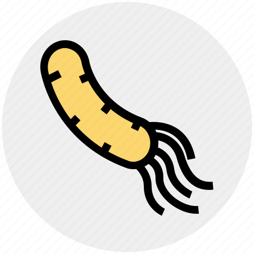 Biology, science, space, virus icon - Download on Iconfinder