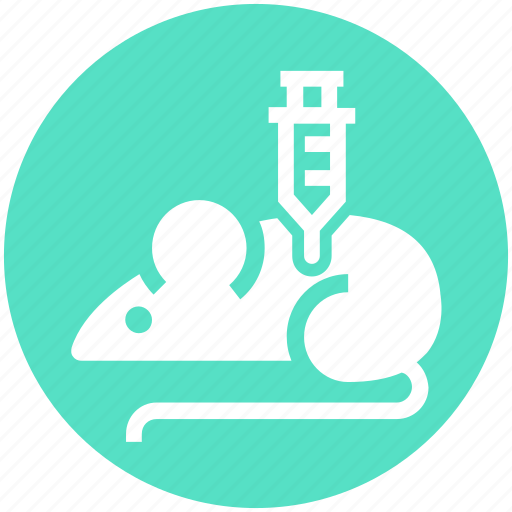Experiment, injection, laboratory, mouse, science, syringe icon - Download on Iconfinder