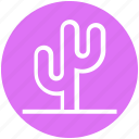 cactus, eco, ecology, nature, plant, science icon
