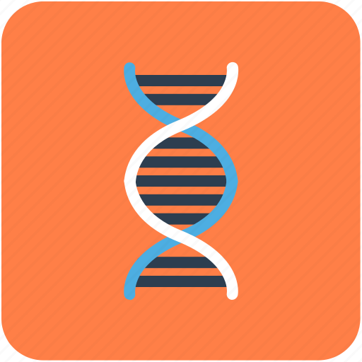 dna, dna chain, dna helix, dna strand, genetics icon