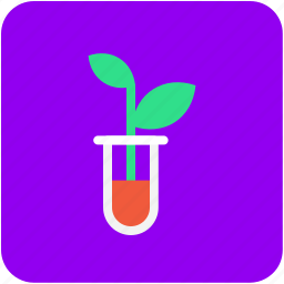 botany experiment, bottle, lab experiment, lab jar, plant in jar icon