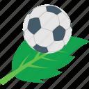 ecology, foliage, greenery, leaf, spinach icon