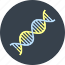 biology, dna, genetic, helix, medicine, rna, science icon