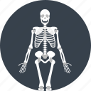 bones, dead, skeleton icon