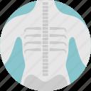 bones, electromagnetic, medical, radiation, scan, wavelength, x-ray icon