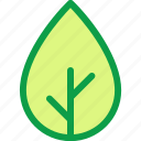 leaf, learn, learning, science, study, subject icon