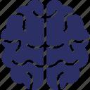 brain, brainstorming, human brain, intelligence, organ icon