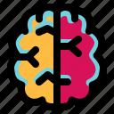 brain, genius, head, idea, intelligence, mind, science