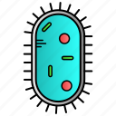 amoeba, bacteria, germs, microbes, science icon
