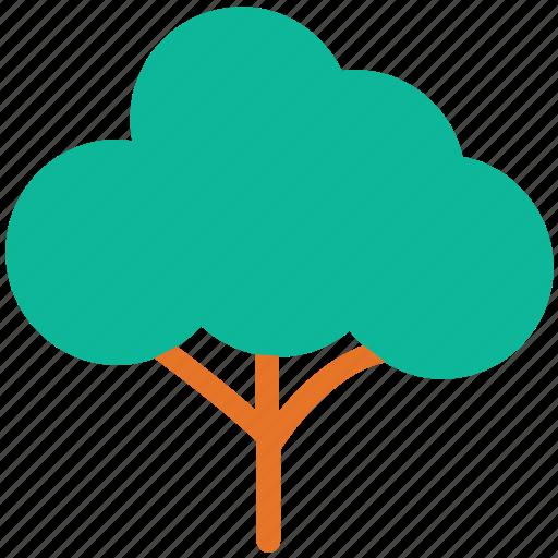 generic tree, nature, shrub form, tree icon
