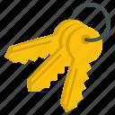 entry, key, master, password, private, unlock icon