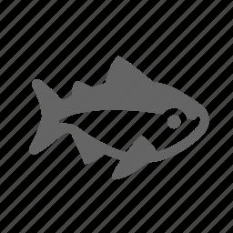 fish, nature, ocean, salmon, underwater icon