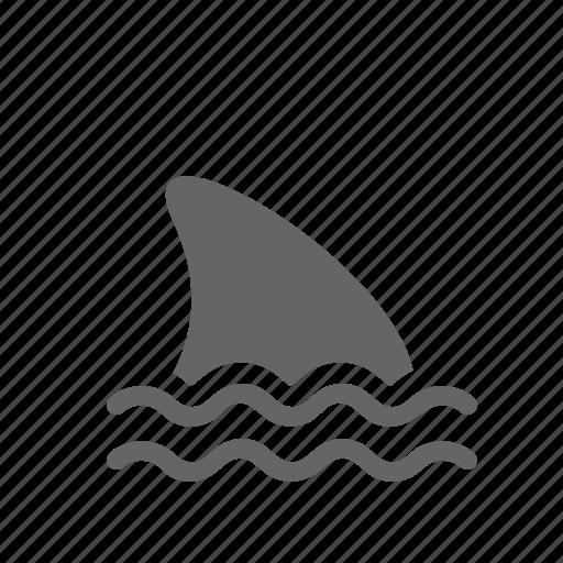 devour, fin, fish, raptorial, sea, shark, swim icon