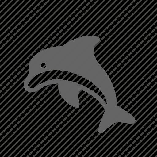 dolphin, fish, life, marine, nature, ocean, sea icon