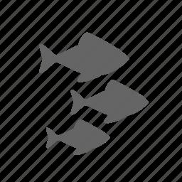 bevy, fish, flock, nature, ocean, sea, underwater icon