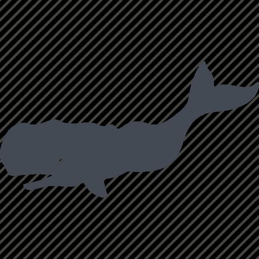 animal, fish, nature, ocean, predator, sea, shark icon