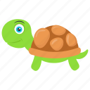 sea turtle, sea-dwelling testudines., shell animal, tortoise, turtle
